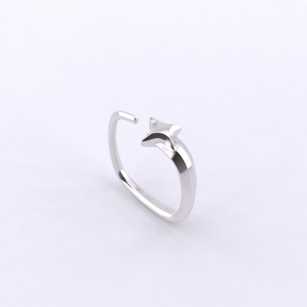 Picture of Shooting Star Ring